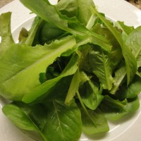 Garden trimmings salad