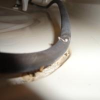 Bad Dishwasher